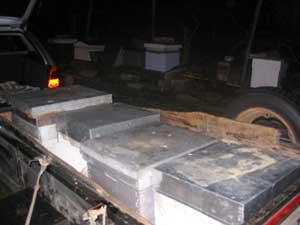 Conseils apiculture du mois de mai