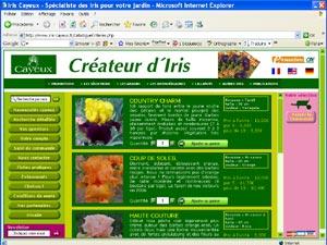 Iris cayeux : achat sur le nouveau site internet