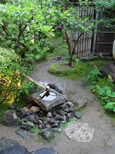 Sophie astuces tout en vert for Plan de petit jardin japonais
