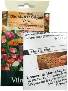 semis des annuelles rustiques