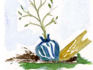 transplantation d'un arbuste