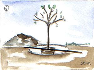 Plantation soignée au niveau du sol