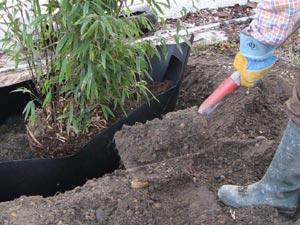 Barrière anti-rhizome mise en place