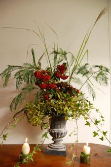 Premier bouquet d'hiver : bambou, mimosa, cotoneaster...