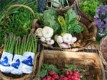 Fruits et légumes bio: plus de goût, moins de pesticides