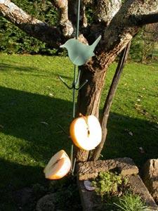 Morceaux de pomme piqués sur un support