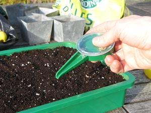 Jardinage en avril : potager et au verger