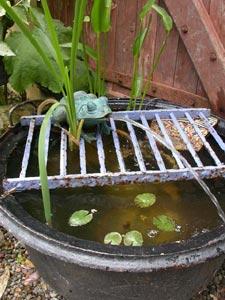Mini bassin d 39 ornement pour le jardin for Mini bassin de jardin