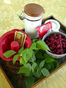 Ingrédients pour le bavarois à la framboise