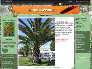 blog palmier D.R. - http://damsmontlucon.skyrock.com/