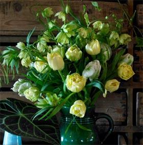 Mettez le printemps en bouquets avec les bulbes à fleurs !