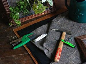 Un mini mur v g tal dans un cadre for Comment faire un mur vegetal