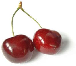 La cerise : un fruit de saison à déguster sans tarder