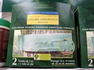 Collier arboricole (ou bande de glue)
