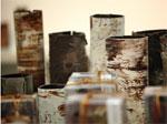Surprenantes écorces en chocolat : quand le cacao se fait oeuvre d'art