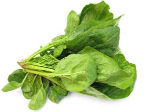 Epinard : un légume santé délicieux en cuisine