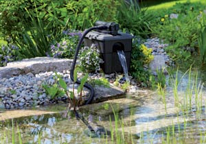 Filtre uvc pour bassin d 39 ornement for Bassin de jardin algues vertes
