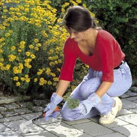 Gants de jardinage modèle femme en vichy