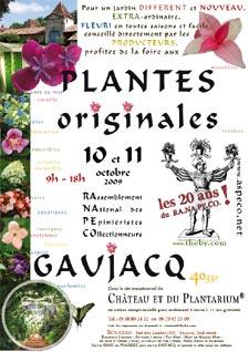 RANAPECO - Gaujacq