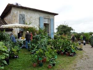 Vente expo plantes de Gaujacq