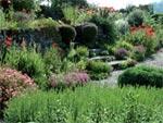 Jardin de l'année 2009