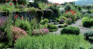Jardin de Castillon-Plantbessin