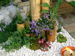 Le jardin minéral
