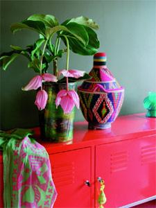 arrosage plante int rieur tout. Black Bedroom Furniture Sets. Home Design Ideas