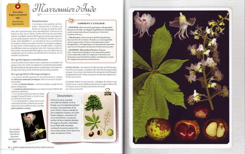Petit larousse des plantes m dicinales livre de g rard for Commander des plantes