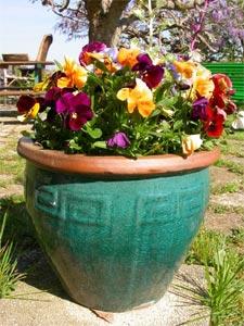 Pots en terre cuite conseils d 39 entretien for Pot ceramique exterieur