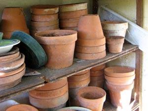 Pots en terre cuite : conseils d'entretien