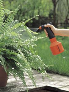 Un vaporisateur pour de belles plantes d'intérieur, même en hiver