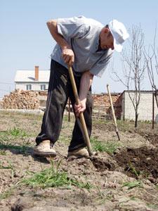 Jardinier bêchant le sol