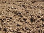 Connaître son sol : calcaire