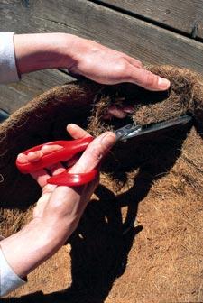 trouer la fibre de coco du panier anglais