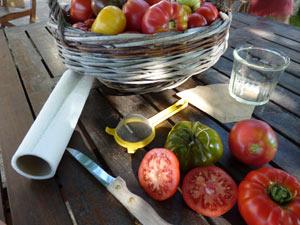 Récoltez vos graines de tomates