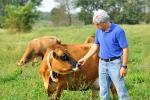 La bio séduit les agriculteurs