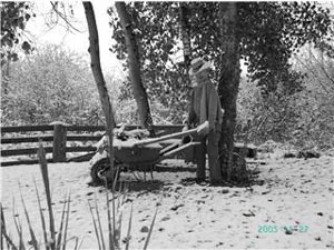 scène d'hiver au jardin d'Alexandra