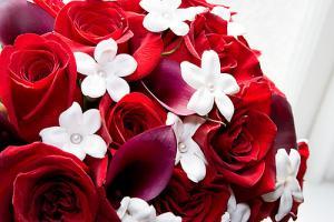Langage Des Fleurs Toutes Les Symboliques