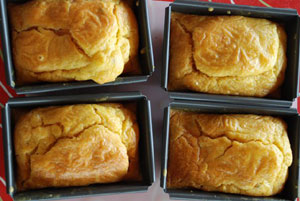 Brioche au saumon sortant du four