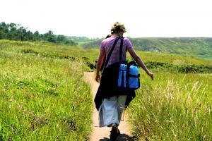 Cueilleur de plantes sauvages : un métier à part entière
