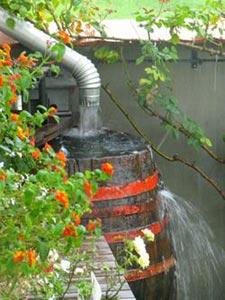 Fût pour récupérer l'eau de pluie