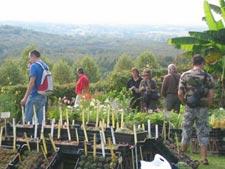 Visiteurs de la foire aux plantes de Gaujacq