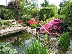 Richesse Cr Ativit R Alisation Jardin Tout
