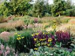 Les jardins naturalistes