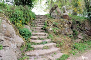 Jardin des plantes anti-cancer