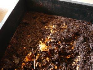 il reste des coquilles d'œuf qui draineront le compost
