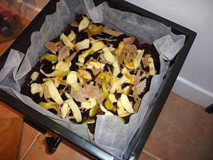 Lombricompost et déchets de cuisine