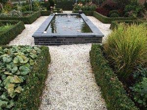 Géométrie dans un jardin moderne avec bassin