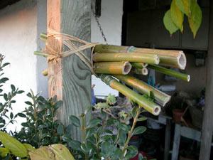 Construire soi-même un nichoir à insectes